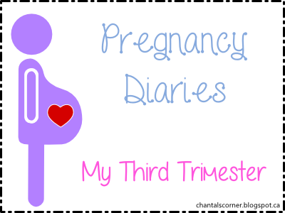 Pregnancy Diaries Third Trimester