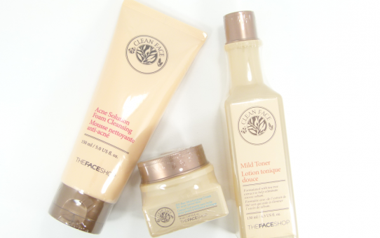 thefaceshop clean face products