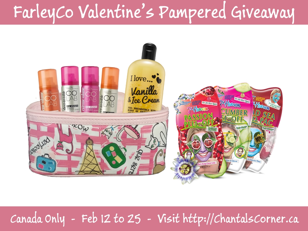 Farleyco Gift Bag Goodies Giveaway
