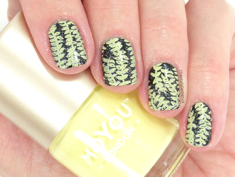MoYou London Nail Stamping Artist Starter Kit Review