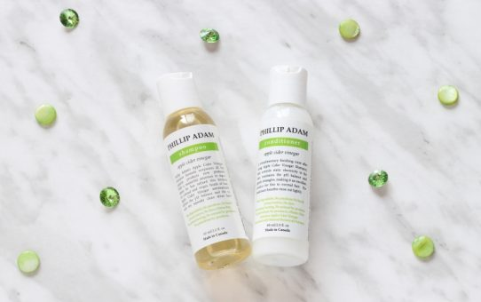Phillip Adam Apple Cider Vinegar Shampoo and Conditioner