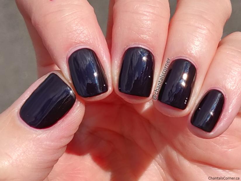 OPI nail polish Lincoln Park After Dark